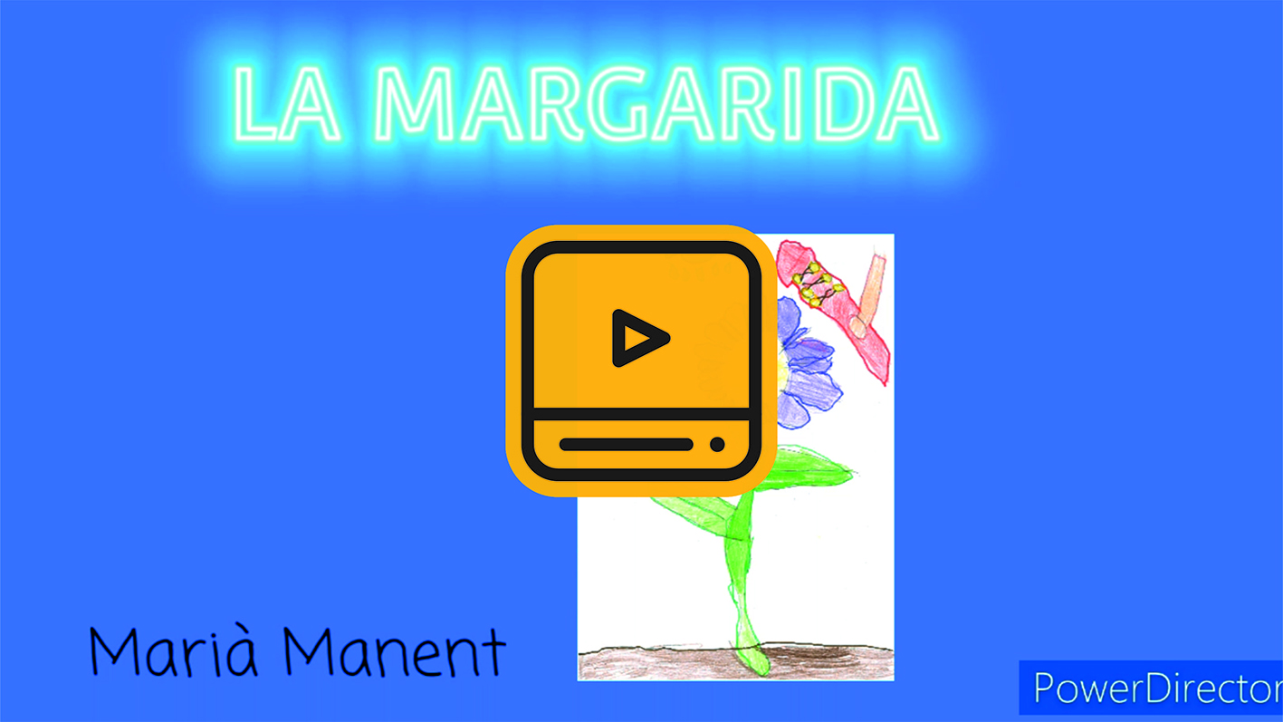 21-La margarida-min